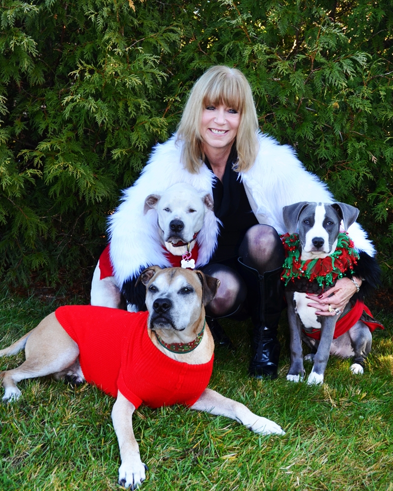 Noreen Ford with her three pit bulls. The white one on the left is Rosie, Cassidy is the blue and white pup on the right, and the brown one with the grey mask laying in the front is her man Poncho.