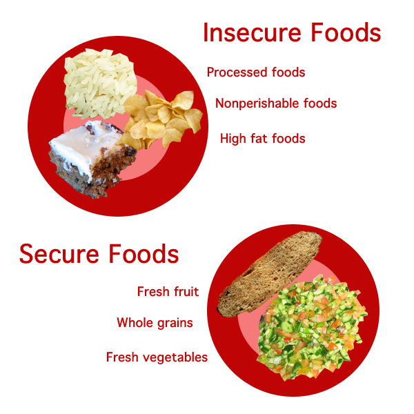 Food Security vs Insecurity