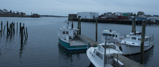 Boats at rest in Gloucester's harbor.