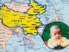 adoption map